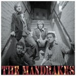 The Mandrakes - Ready Or Not